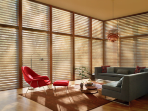 Image of Motorized Blinds by Rose Sun Motor